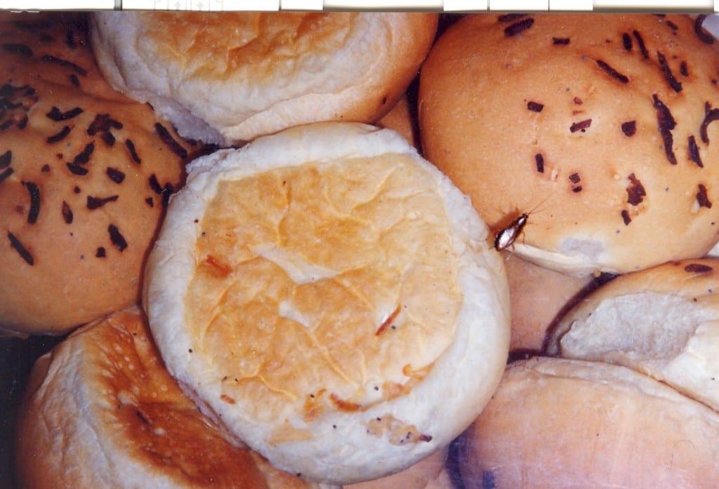 live cockroach on bakery bun is food safety fail